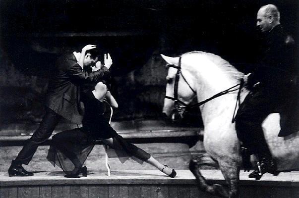 Spectacle équestre : Polo Tango